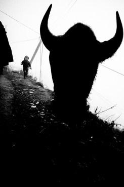 eric-kim-street-photography-sapa-0006247-1